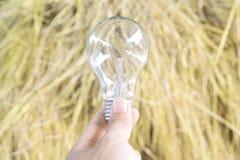 在明亮的背景的电灯泡 库存图片