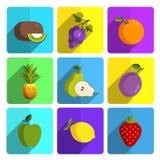 在明亮的背景设置的五颜六色的果子象 图库摄影