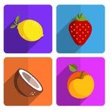 在明亮的背景设置的五颜六色的果子象 库存图片