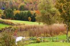 在明亮的颜色秋天之中少许池塘 免版税库存图片