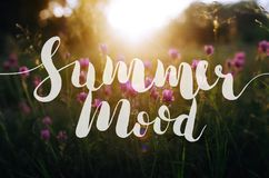 在明亮,五颜六色的背景-夏天心情的手拉的字法 旅行社的,明信片, T恤杉,海报书法, 免版税库存照片