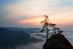 在易北河砂岩山的日出 免版税库存照片