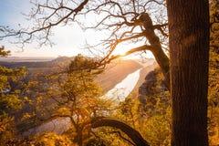 在易北河砂岩山的日落 库存图片