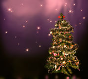 在星天空的圣诞树 免版税库存照片