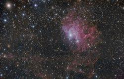 在星座御夫星座的火焰状星星云 图库摄影