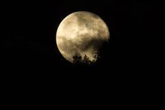 在星期五蜂蜜月亮或满月第13 06/13/14,俄勒冈,加州 免版税库存照片