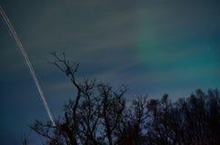 在星的飞机轻的条纹用极光borealis和树填装了天空 库存照片