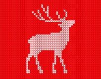 在映象点的被编织的鹿 库存例证