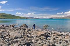在春天享用南阿尔卑斯山 免版税库存图片