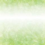 在春天光的光叶子 库存例证