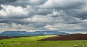 在春天农业领域的风暴 库存图片
