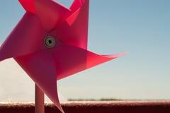在春天太阳下的一个大桃红色转盘 免版税库存图片