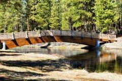 在春天小河的脚桥梁 免版税库存照片