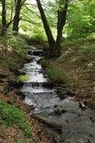 在春天山风景的河流程 库存照片