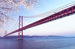 在春天日落的红色桥梁,里斯本,葡萄牙 图库摄影