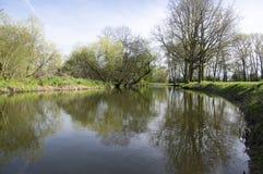 在春天晴天期间,河Chrudimka oxbow, Pardubice,地方说出Horseshoe名字 免版税库存照片