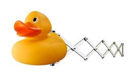 在春天机制的橡胶鸭子 免版税库存图片
