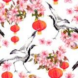 在春天桃红色的红色中国灯笼开花-苹果、李子、樱桃、佐仓和跳舞起重机鸟 无缝的模式 免版税库存照片