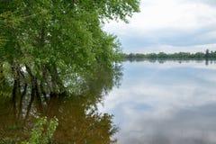 在春天洪水期间的河岸 库存图片