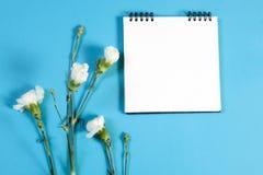 在春天的一个笔记本有在蓝色背景的一支桃红色康乃馨的与笔记的空的空间 免版税库存图片