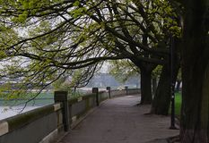 在春天的克拉科夫维斯瓦河大道 免版税库存照片