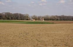 在春天的富兰德领域 库存图片