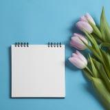 在春天的方形的笔记薄有白色牛皮纸的,桃红色郁金香在蓝色背景 Copyspace 图库摄影