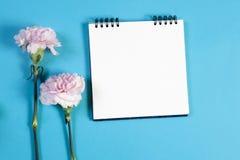 在春天的笔记本有在蓝色背景的一支桃红色康乃馨的与笔记的空的空间 库存照片