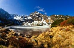 在春天的Tatra山,波兰。 免版税库存图片