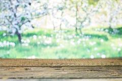 在春天背景的木板 免版税图库摄影