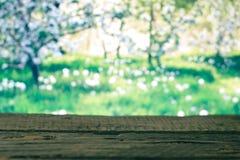 在春天背景的木板 免版税库存图片