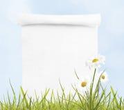 在春天背景的白纸纸卷 库存照片