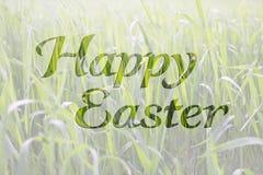 在春天自然本底的愉快的复活节字法书法 免版税库存图片