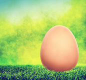 在春天草的没有漆的复活节彩蛋 免版税库存照片