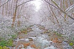 在春天雪风暴的山小河 免版税库存图片