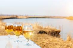 在春天风景的背景的啤酒 库存图片