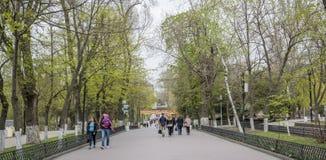 在春天高尔基公园公民走并且基于长凳 库存图片