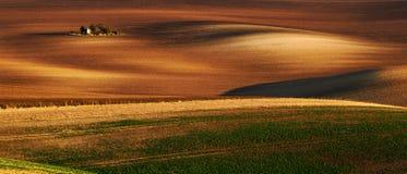 在春天,捷克共和国期间,详述风景在南Moravian领域 库存照片