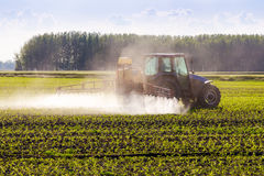 在春天,玉米在拖拉机被喷洒 免版税库存照片