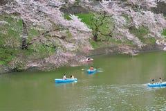 在春季期间的划船在东京 免版税库存图片