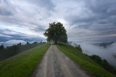 在春雨之后的山风景 斯洛文尼亚阿尔卑斯 森林公路、令人尊敬的树、雾、云彩和峰顶 J村庄  图库摄影