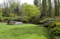 在春雨以后的庭院草坪 免版税库存图片