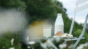 在春黄菊草坪中间,一把白色椅子的是一个瓶牛奶,并且有一杯牛奶和面包 在附近 股票录像