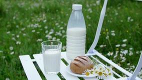在春黄菊草坪中间,一把白色椅子的是一个瓶牛奶,并且有一杯牛奶和面包 在附近 影视素材