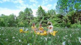 在春黄菊草甸,有三个孩子,他们喝甜饮料 他们有一顿野餐,他们获得乐趣,他们是 股票视频