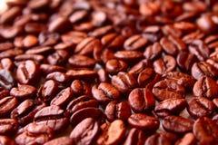在是前的烤咖啡豆研磨 免版税库存照片