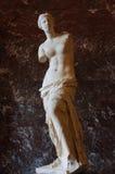 在显示的金星雕象 免版税图库摄影