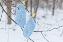 在晒衣夹的蓝色手套 库存图片