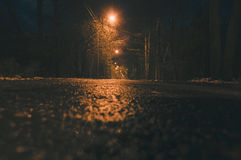 在晚上倒空湿柏油路和路灯柱光 免版税库存照片