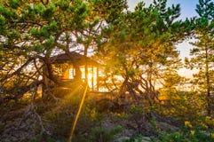 在晚上太阳的眺望台 免版税库存图片